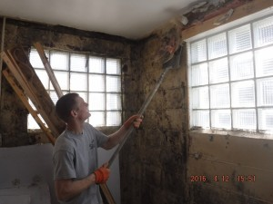 Black mold remediation Cincinnati Ohio