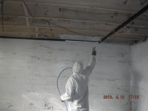 Black mold removal Cincinnati Ohio