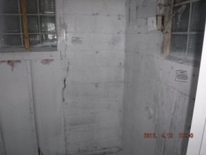 Black mold in house Mansfield Ohio