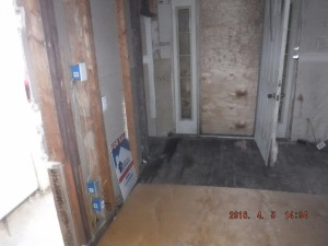 Black mold in basement Mount Vernon Ohio
