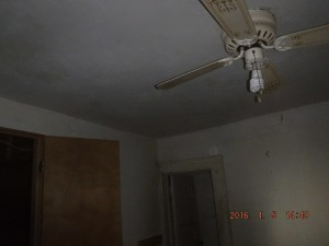 Black mold in house Cleveland Ohio